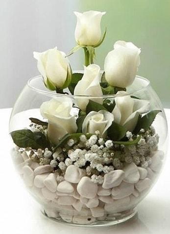 Beyaz Mutluluk 9 beyaz gül fanusta  Muğla çiçek servisi , çiçekçi adresleri