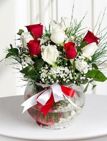 Aşk Küresi  5 beyaz 5 kırmızı gül fanusta  Muğla çiçek mağazası , çiçekçi adresleri