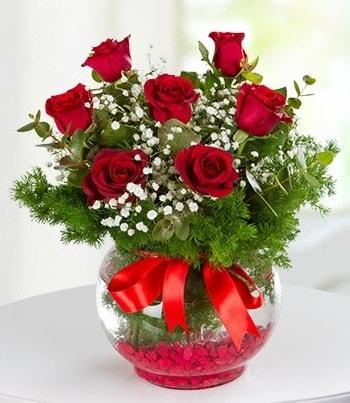 fanus Vazoda 7 Gül  Muğla 14 şubat sevgililer günü çiçek