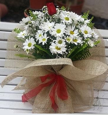 Papatya 1 adet kırmızı gül buketi  Muğla kaliteli taze ve ucuz çiçekler
