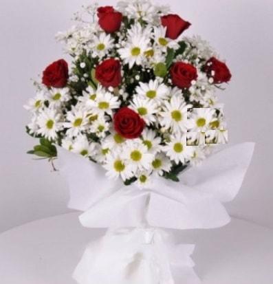 7 adet kırmızı gül ve papatyalar krizantem  Muğla çiçek mağazası , çiçekçi adresleri