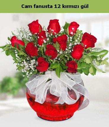 Cam içerisinde 12 adet kırmızı gül  Muğla çiçek mağazası , çiçekçi adresleri