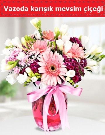 Vazoda karışık mevsim çiçeği  Muğla 14 şubat sevgililer günü çiçek