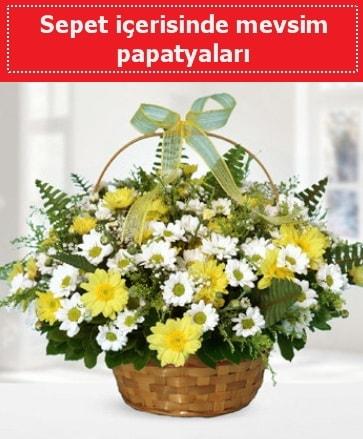 Sepet içerisinde mevsim papatyaları  Muğla anneler günü çiçek yolla