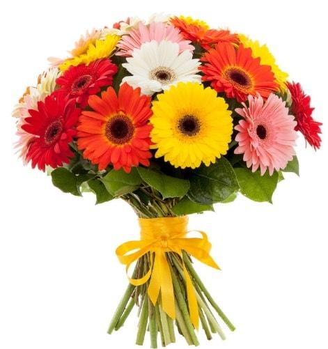 Gerbera demeti buketi  Muğla uluslararası çiçek gönderme